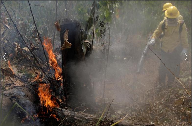 Пожары в лесах Амазонки / Вчерашнее фото 25.08.19
