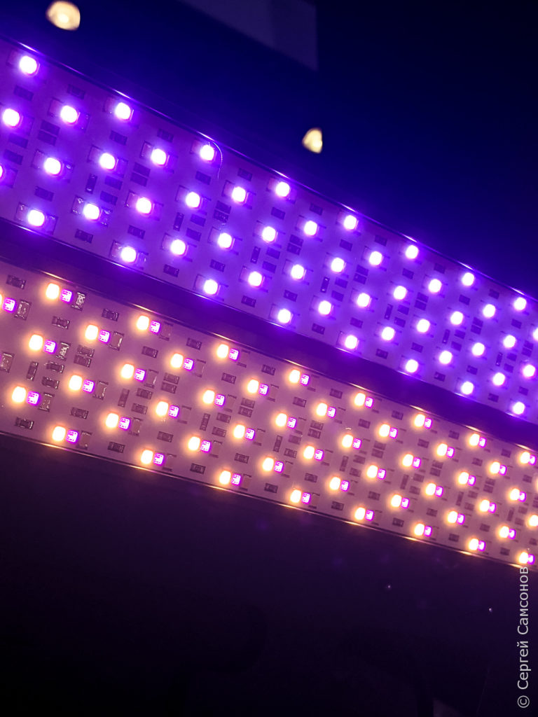 Светодиодный RGB свет Akurat Sector